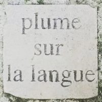 cropped-plume_langue_pave.jpg